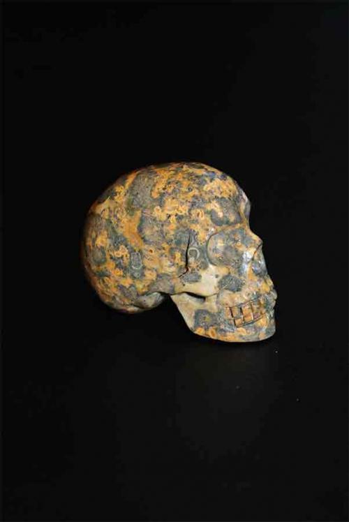 Luipaard Jaspis Crystal Skull 5 cm