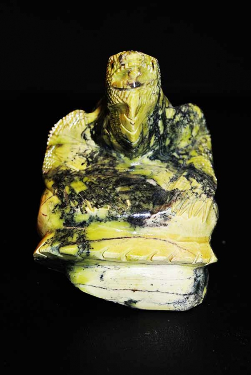 Serpentijn Leguaan met prachtige kleur verschillen.