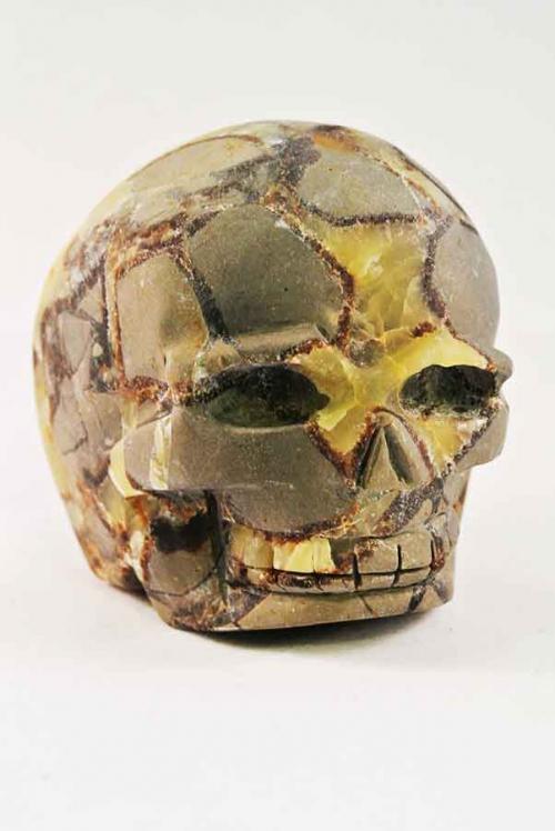 septarie crystal skull, septarie kristallen schedel, septarie crystal skull, septarian skull, septarian crystal skull, septarian kristallen schedel, calciet, aragoniet, septarie skull