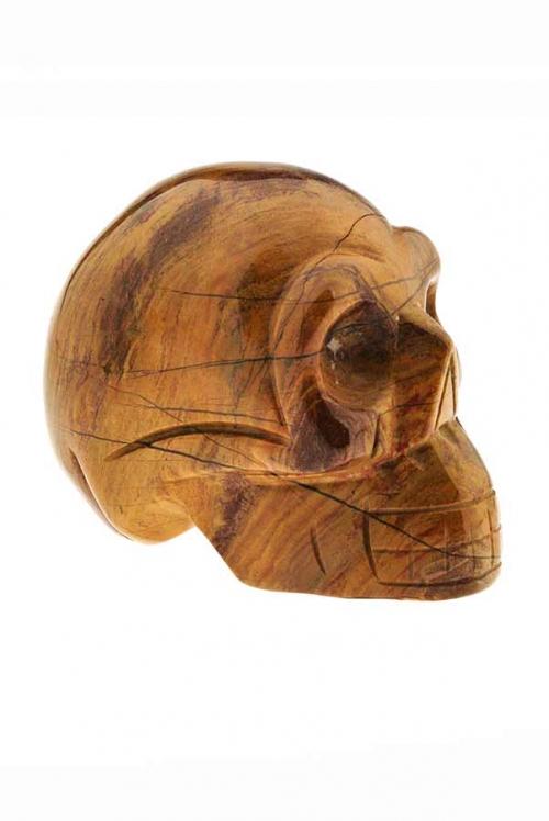 Versteend hout kristallen schedel, versteend hout skull, schedel, kopen, fossiel hout crystal skull, versteend hout kristallen schedel, petrified wood, fossiel hout, versteen hout sculptuur, sculptuur, gepolijst, polished, polijst, kopen, bestellen, edelsteen, edelstenen, mineralen, mineraal, rood, madagaskar, madagascar, versteend hout schedel