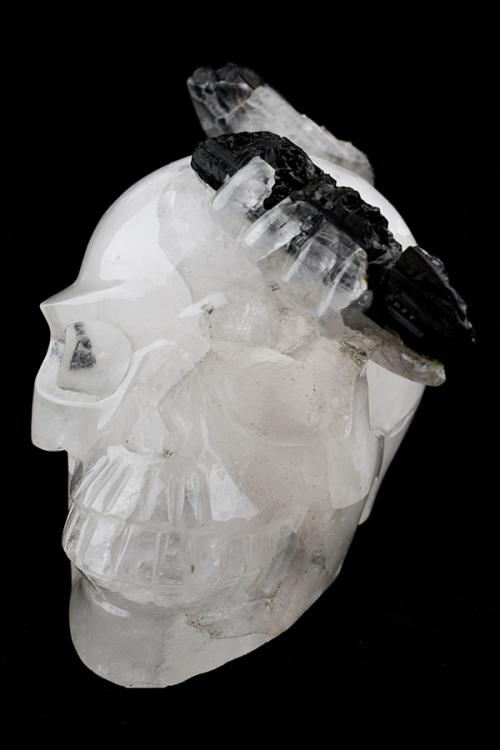 toermalijnkwarts kristallen schedel, bergkristal, toermalijn, zwarte toermalijn, kristallen schedel, crystal skull, rutiel, toermalijn kwarts, kopen, arnhem, happy spirit