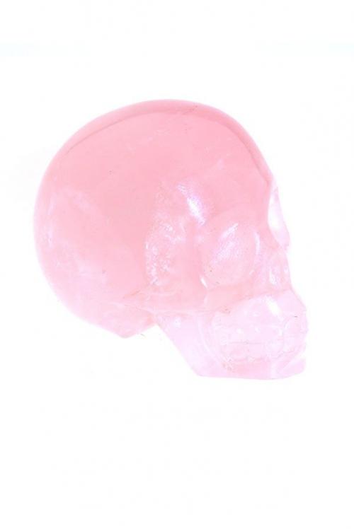 rozenkwarts schedel, 5 cm