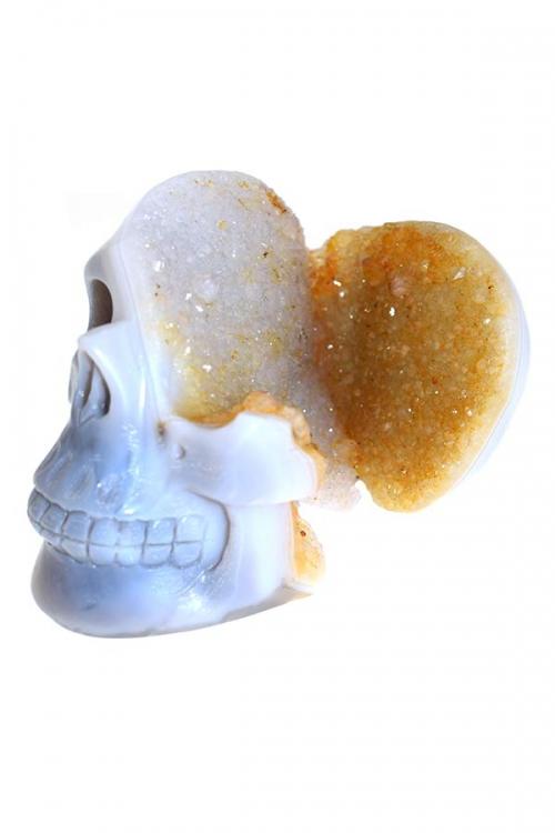 Citrien geode kristallen schedel, citrine crystal skull, kopen, edelstenen schedel, edelsteen schedel, skull, agaat