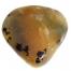 dendriet gepolijst, polished dendrite, dendriet agaat, kopen