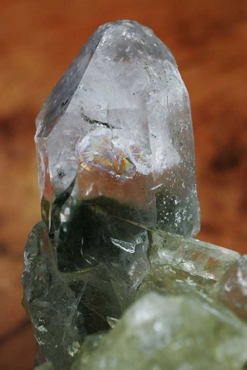 Chlorietfantoom cluster, chloriet punt, chlorietfantoom, bergkristal cluster, kopen