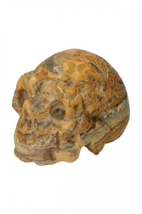 Agaat, crazy lace agaat, crazy lace agate, crystal skull, gele agaat, kopen, kristallen schedel, schadel, schedel, skull, crazy lace agaat kristallen schedel