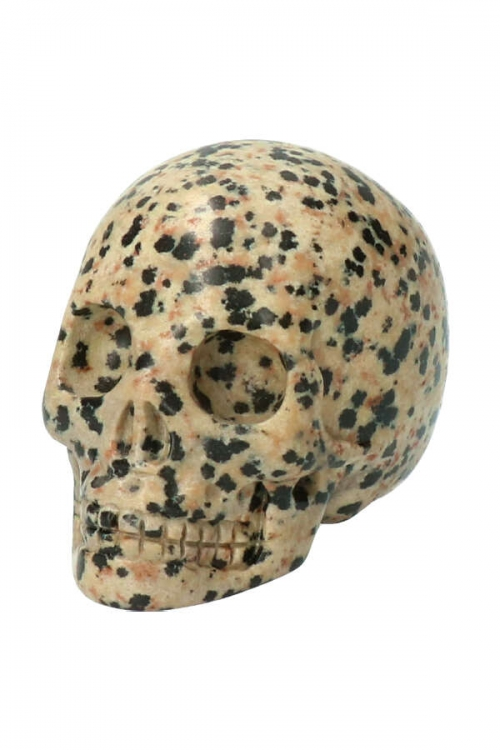 Dalmatiër Jaspis schedel, dalmation jasper crystal skull, kopen