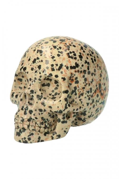 Dalmatier Jaspis kristallen schedel, dalmatier jaspis kristallen schedel, dalmatier jaspis crystal skull,