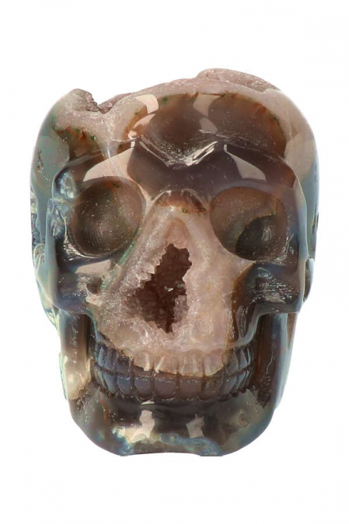 chloriet geode kristallen schedel, geode skull, crystal skull, kopen, arnhem, gelderland,