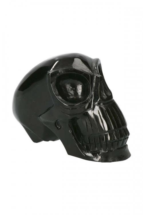Zilver Obsidiaan Alien traveller kristallen schedel, kopen, silver obsidian crystal skull