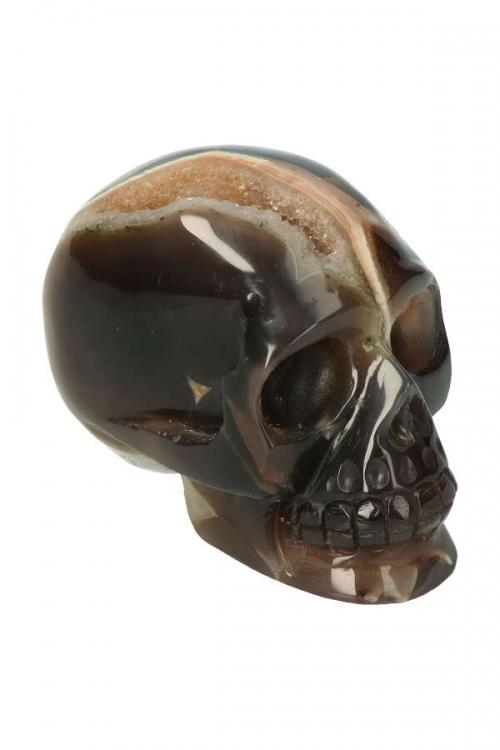 Chloriet fantoom met Golden Healer geode kristallen schedel, elven energie, chloriet fantoom kristallen schedel, Chloriet fantoom geode kristallen schedel, chlorite, kopen, geode schedel, crystal skull